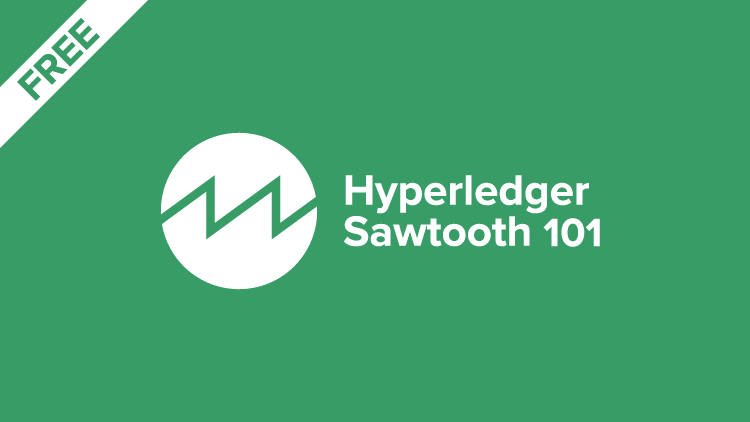 HLS-101 Introduction to B9lab Hyperledger Sawtooth Cover Image